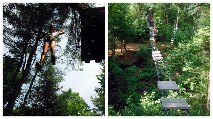 2012 Treetop Adventures