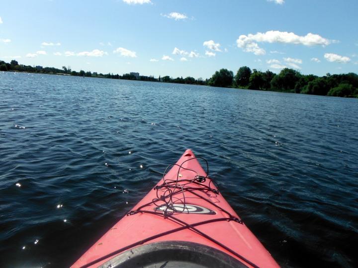 A Reunion, A Lake, & AnEstate