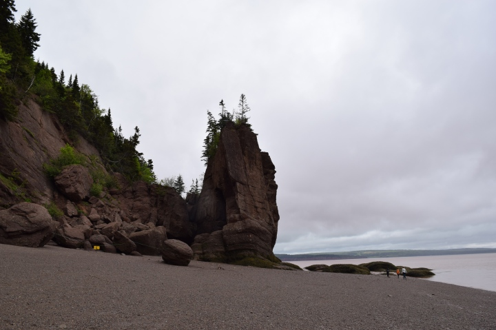 Hopewell Rocks: Walk Where the Fish Roam