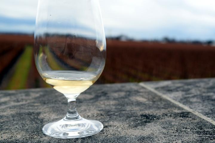 Wine Not? – A Niagara-on-the-Lake WineryTour